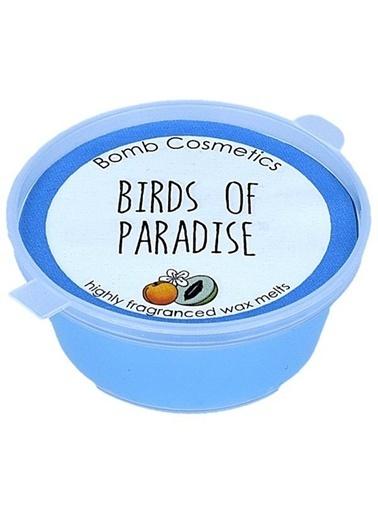 Bomb Cosmetics Birds Of Paradise Mini Melt Oda Kokusu Renkli